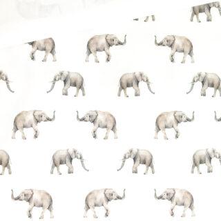 Single Jersey - Elefanten Cremeweiß